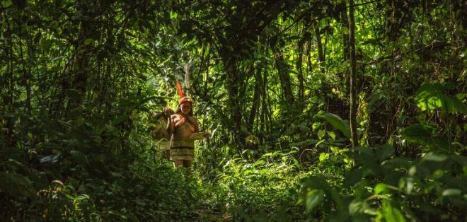 """""""Antes cazaban mucho. Ahora que han entrado al proyecto del cacao"""", dice una waorani."""