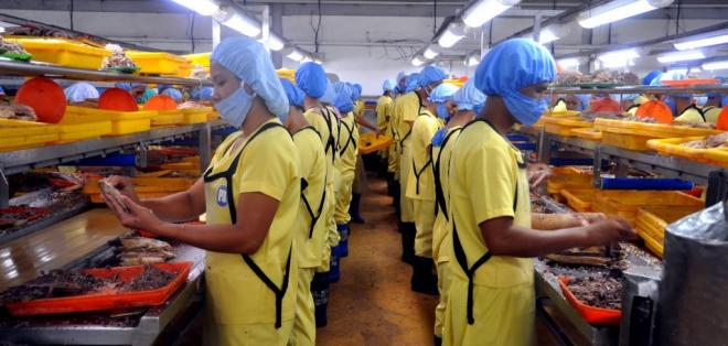 Se busca que algunos productos ecuatorianos entren con beneficios arancelarios. Foto referencial / comercioexterior.gob.ec