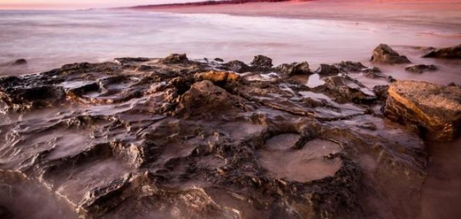 Los investigadores examinaron las huellas durante más de 400 horas. Foto: The University of Queensland