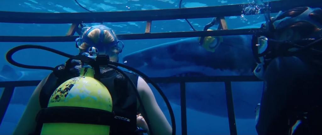 La cantante y actriz Mandy Moore es una de las protagonistas de esta cinta de terror. Foto: Captura.
