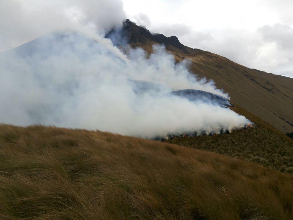 Se estima que alrededor de 205 hectáreas se han visto afectadas por el incendio forestal. Foto: Cortesía