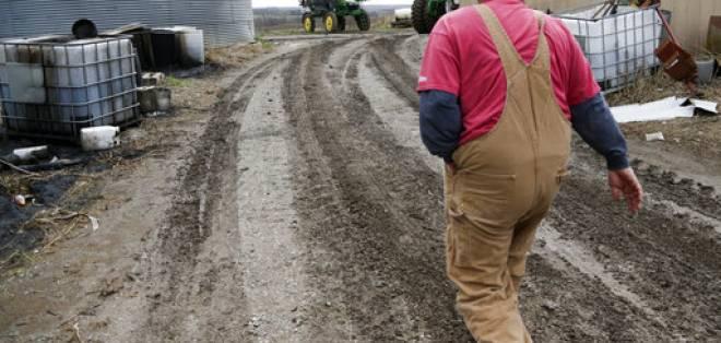 En esta fotografía de archivo del 4 de abril de 2017, Blake Hurst, un agricultor de maíz y de soja, camina por su granja en Westboro, Missouri. Foto: AP