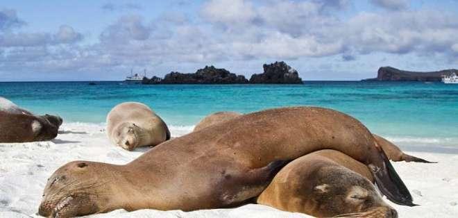 BONN, Alemania.- La UICN publicó el listado de las zonas naturales en peligro por el efecto invernadero, entre ellas se incluye a las Islas Galápagos. Foto: Archivo.