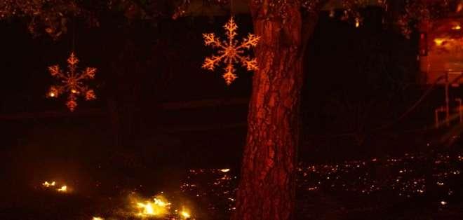 Algunos árboles en Bonsall, al norte de San Diego, California, tienen ya los adornos navideños propios de la época.