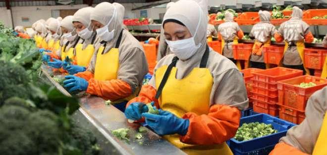 QUITO, Ecuador.- Según las autoridades, el sistema beneficia a 800 empresas ecuatorianas. Foto: Fe