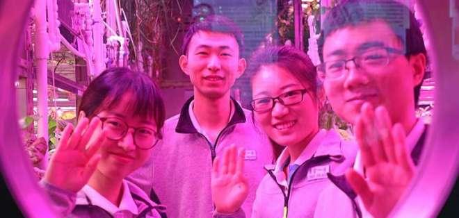 Cuatro estudiantes vivieron en una cabina de 160 m2 llamada Yuegong-1. Foto: Redes