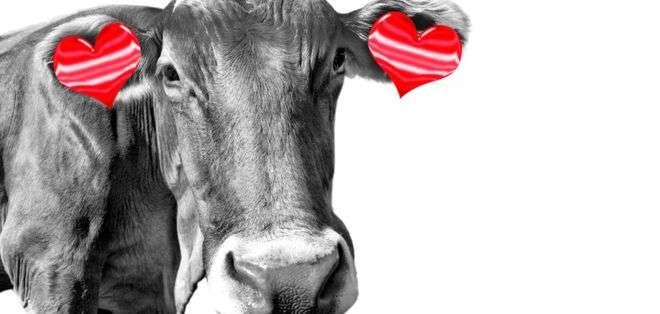 La demanda por productos veganos está disparada, según datos de la Sociedad Vegana de Reino Unido. Foto: Getty Images