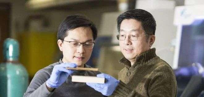 El profesor Liangbing Hu (izq.) muestra la supermadera densa y comprimida que es más fuerte que el acero. Su colega Teng Li sostiene un trozo de madera natural. (Foto: gentileza Hua Xie)