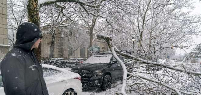 FILADELFIA, EE.UU.- El temporal ha provocado la caída de árboles en esta ciudad del estado de Pensilvania. Foto: AFP