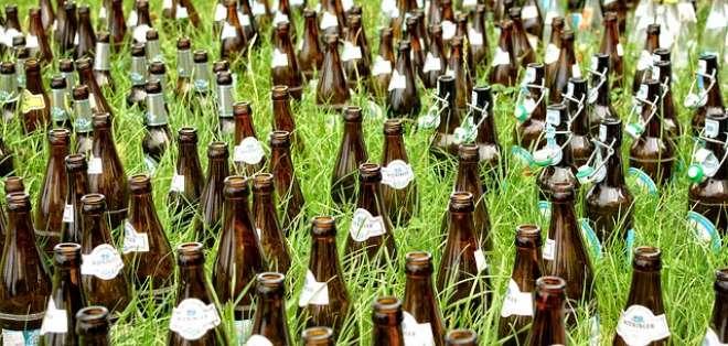 Una de las formas de reciclar las botellas de vidrio es usarlo como maceta para sembrar plantas pequeñas. - Foto: Pixabay