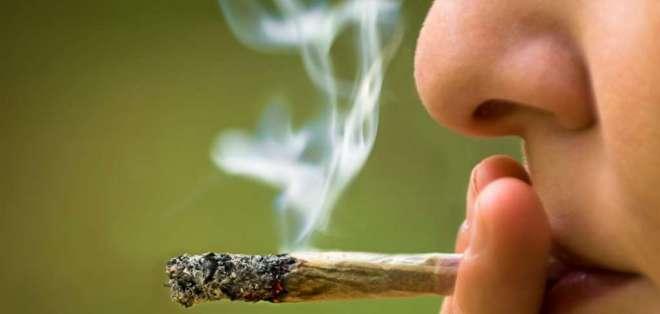 Primer ministro ha hecho de la legalización de esta droga una promesa de campaña. Foto referencial / republica.gt