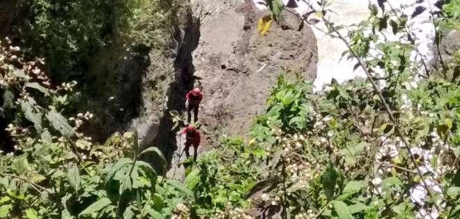 Búsqueda por la quebrada de Guápulo. Foto: BCBQ