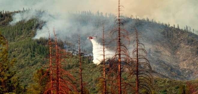 Más de 3.000 bomberos fueron movilizados para luchar contra las llamas. Foto: AFP