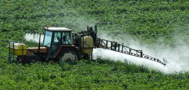 El glifosato es usado a través de diversas marcas comerciales en los cultivos.