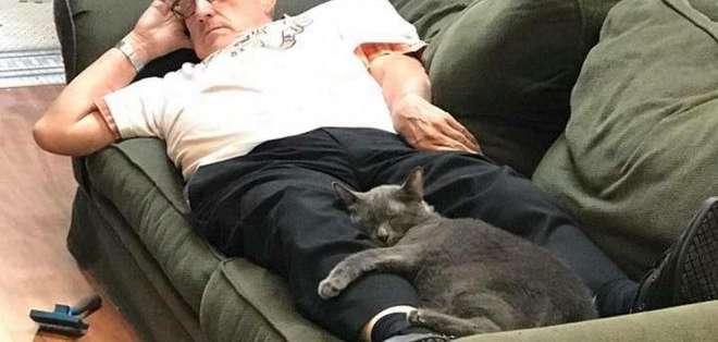 """El maestro de español jubilado -conocido como """"el abuelito de los gatos""""- no puede creer su fama en internet."""