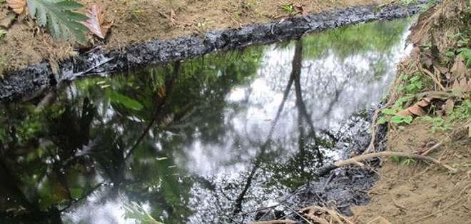 Denuncian derrame de petróleo en comunidad de Shushufundi. Foto: Referencial