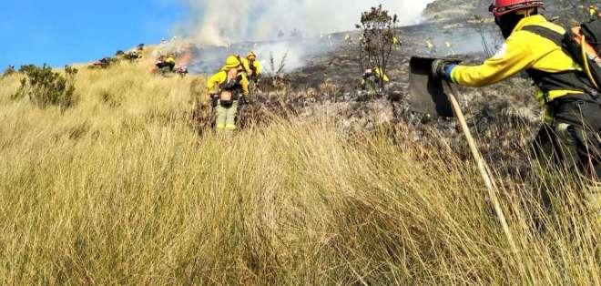 El incendio, que consumió gran parte de vegetación, deja daños incuantificables. Foto: @BomberosQuito
