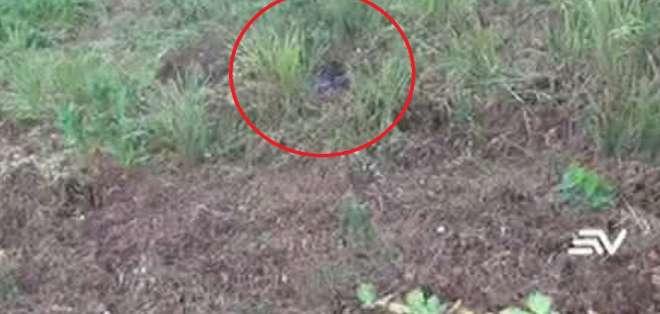 """MOCACHE, Ecuador.- Las autoridades sospechan que el hombre fue asesinado por """"venganza"""". Foto: Captura."""