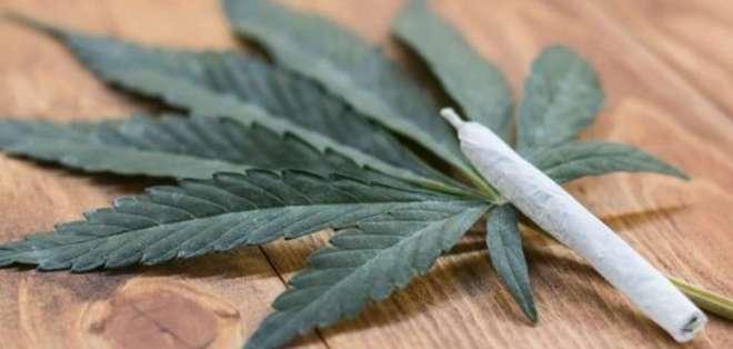 Estiman que la legalización de la marihuana causará problemas a uno de cada 3 adultos. Foto: Archivo / AFP