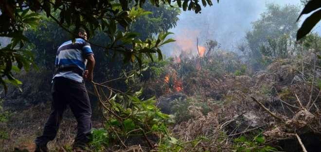 """El gobernador de Tungurahua, Juan DeHowitt, aseguró que el incendio fue """"provocado"""". Foto: API"""