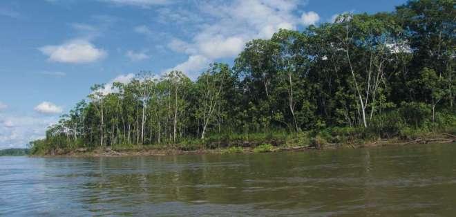 Conaie y colectivos ecologistas anunciaron movilizaciones ante decisión. Foto: yasuni-ecuador.blogspot.com