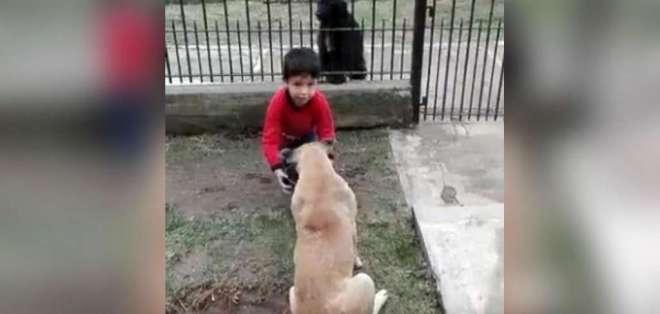 El video se volvió viral a través de la red social Facebook. Foto: Captura de video