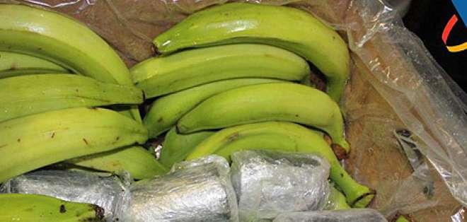 La droga fue encontrada en cajas de bananas y supera los 82 millones de dólares. Foto: Referencial