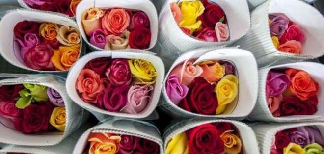 Récord en exportación de flores ecuatorianas por San Valentín.