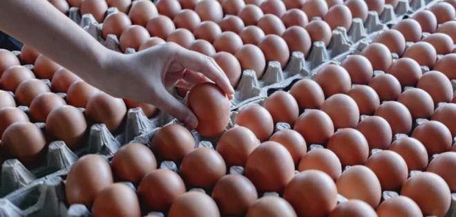 En Ecuador se producen 3.650 millones de huevos al año. Foto: Ministerio de Agricultura