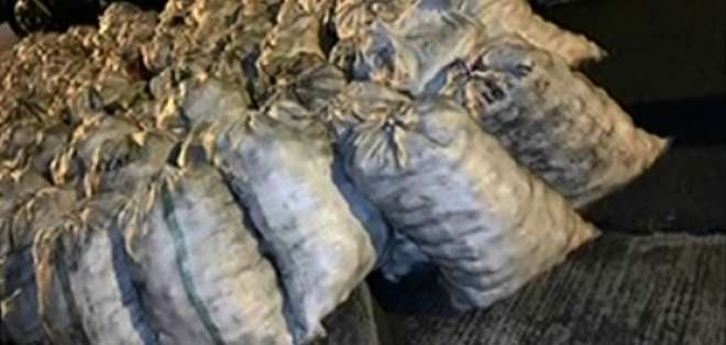 Decomisan droga en sacos de papa en Tababela. Foto: Captura de video