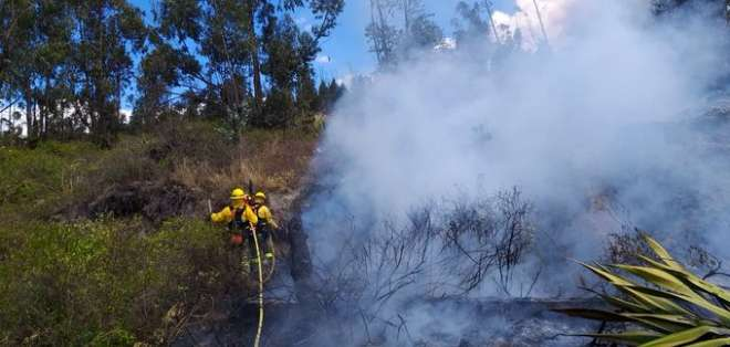 Bomberos atienden incendio forestal al norte de Quito. Foto: Bomberos Quito