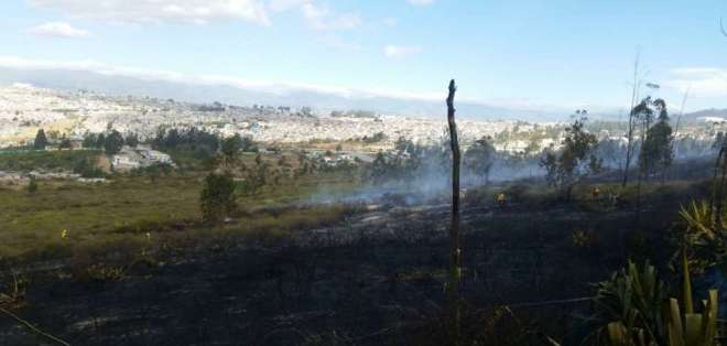 Los bomberos lograron controlar el incendio cerca de las 16h00 del domingo 11 de agosto. Foto: Captura