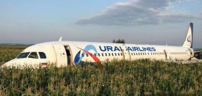 La tripulación del avión de Ural Airlines tuvo suerte de tener un campo de maíz que sirviera como cojín para aterrizar.