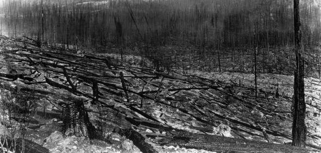 El Gran Incendio de 1910 arrasó con los bosques del norte de Idaho, en EE.UU.