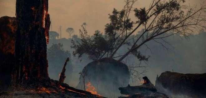Este año los incendios en la Amazonía han sido mucho más severos que en 2018.