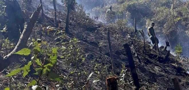 Hasta la zona fueron movilizados 30 bomberos. Foto: ECU 911 Tulcán