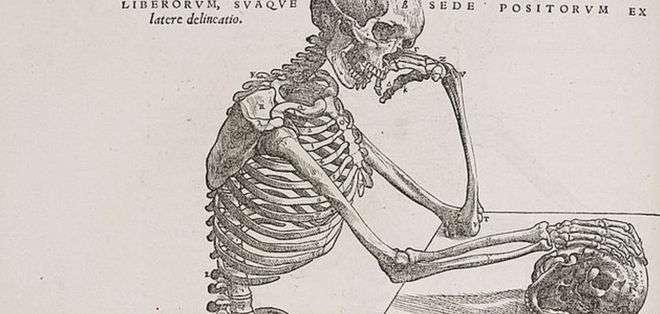 Todavía no sabemos todo lo que hay que saber de nuestra anatomía.