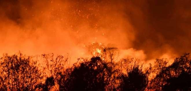GUAYAQUIL, Ecuador.- Más de 60 bomberos atendieron el incidente. Foto: cortesía