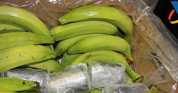 Decomisan en Letonia droga procedente de Ecuador