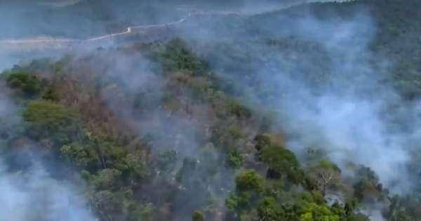 Incendios forestales en Brasil aumentan 83 % este 2019