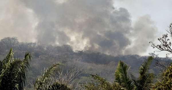 Evo Morales suspende campaña por incendios forestales