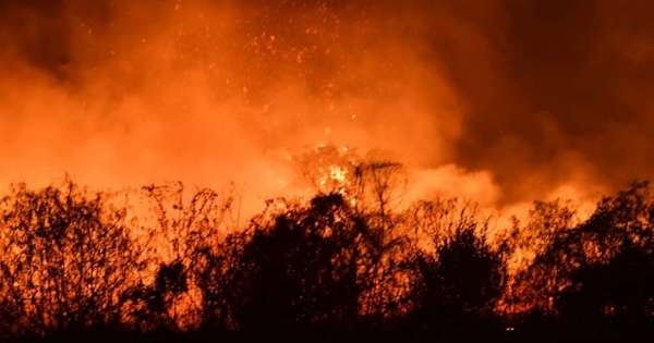 Incendio junto a la av. Pedro Menéndez alarma a ciudadanos