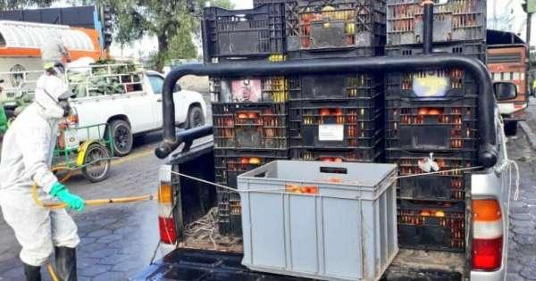 Implementan corredores logísticos para abastecimiento de alimentos