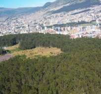 Encuentran en un parque de Quito el cuerpo de una joven de 22 años.
