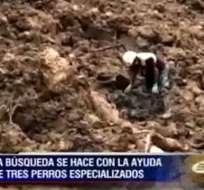 Continúan las labores de búsqueda tras el deslave en Esmeraldas.