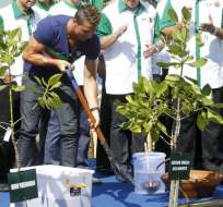 YAKARTA - Indonesia.- Cristiano Ronaldo defiende los manglares indonesios en la isla de Bali. Fuente EFE