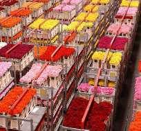 EEUU deberá decidir el 31 de julio si renueva o no el SGP que protege a más de 900 productos. Foto: canalcncmedellin.com