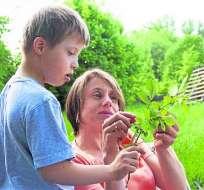 """Científicos estadounidenses lograron """"corregir"""" la falla genética que provoca el Síndrome de Down. Foto: The Guardian"""