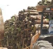 El Estado realizará operaciones de inteligencia para detener la deforestación. Foto: esmeraldas.blogspot.net