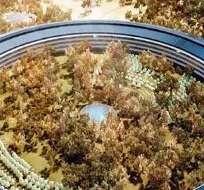 APPLE. El anillo de cristal y metal contará con una de las instalaciones de paneles solares más grandes del mundo y albergará un nuevo centro de investigación y desarrollo. Foto: BBC